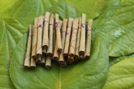 Beedi, leaf,