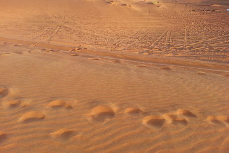 desert_madras_courier